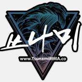 Tsunami Mixed Martial Arts, Decatur, , GA