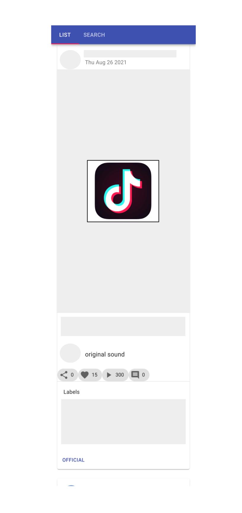tiktok_scraper_web_app_sample