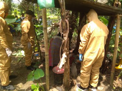 Petugas saat mengevakuasi jenazah Tiurlen Br Damanik dari perladangan.