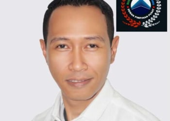 Ade Mulyana, Wakil Ketua Umum DPP DGP