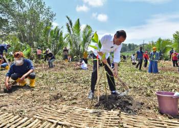 Presiden Jokowi melakukan Penanaman Pohon Mangrove di Desa Tritih Kulon, Kecamatan Cilacap Utara, Kabupaten Cilacap,  Jawa Tengah (23/9/2021). Rehabilitasi mangrove tahun 2021 ditargetkan seluas 34.000 hektar di tanah air dalam rangka memulihkan, melestarikan kawasan hutan mangrove serta mengantisipasi perubahan iklim. ANTARA FOTO/Setpres-Agus Suparto/foc.
