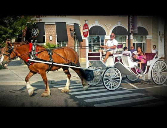 COMPLIMENTARY CARRIAGE RIDES AT THE MARKET COMMON