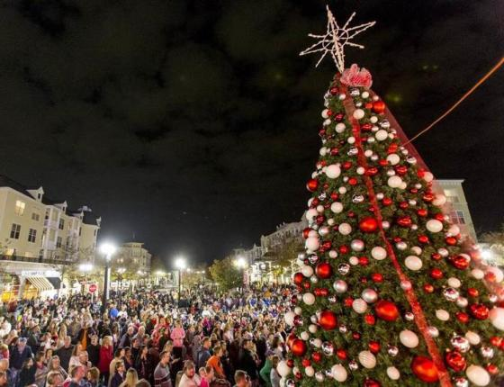 Annual Tree Lighting at The Market Common