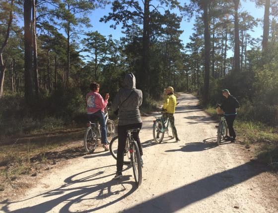 Bike to the Boardwalk