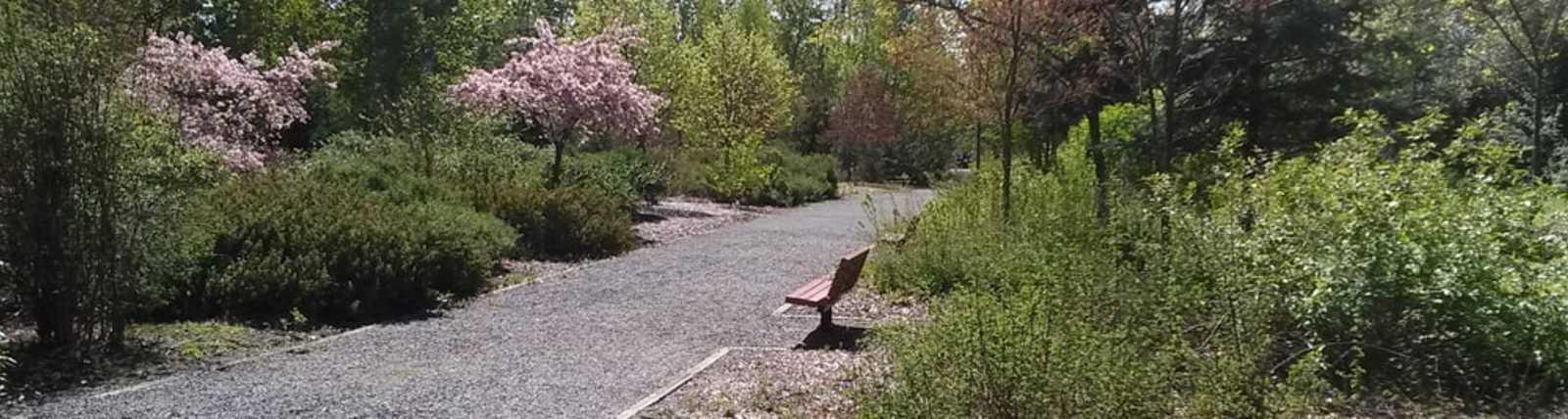 Tukwila Pond Park