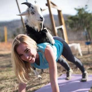 Farm Friend Bend-Yoga with Goats