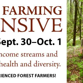 Forest Farming Intensive