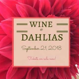 Wine & Dahlias