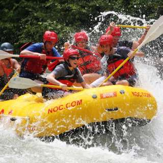 Rapid Transit: Rafting and Train Excursion