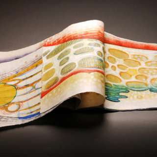 Picturing This: Prints and Books by Karen Kunc