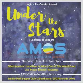 4th Annual: Under the Stars Fundraiser for AMOS