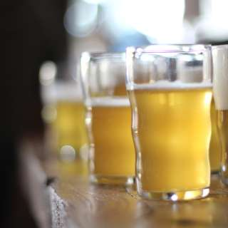 Private Brewery Tours for NC Beer Month