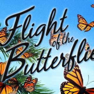 """Flight of the Butterflies"" Documentary Film"