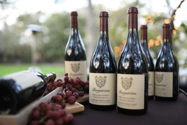 Tastings Under the Tree: Pinot Noir Picks & Friends from Around the Globe