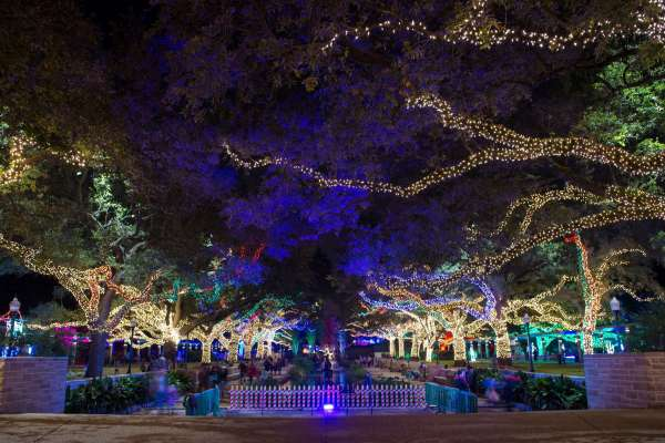 8th Annual Wave Holiday Lights Tours