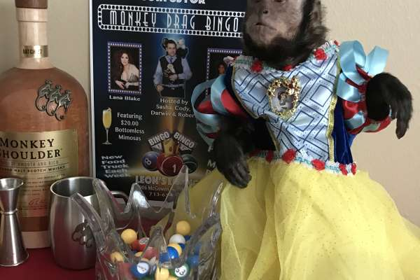 Monkey Drag Bingo