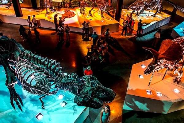 1-Day Houston Museum Pass
