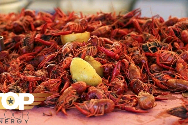 4th Annual Heads N Tails Crawfish Fest