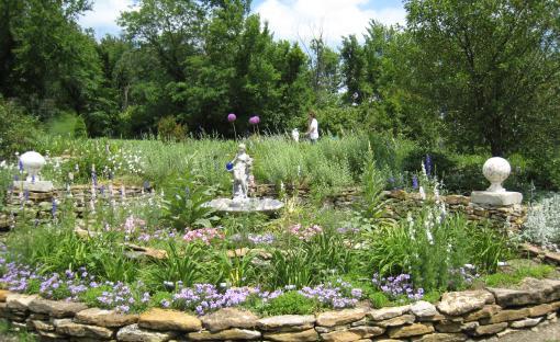 Toad Hollow Daylily & Iris Farm | Emporia, KS 66801
