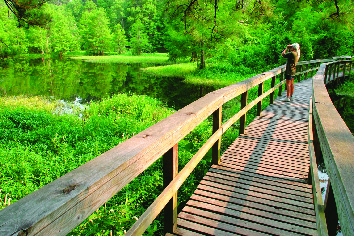 Northlake Nature Center Header