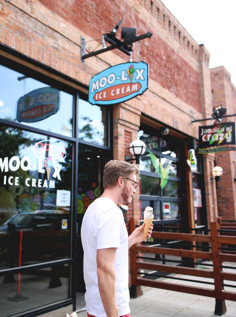 Moolix Icecream