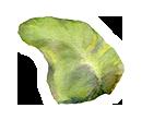 Island Lanai
