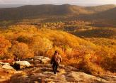 fall-view-from-bear-mountain-state-park.jpg
