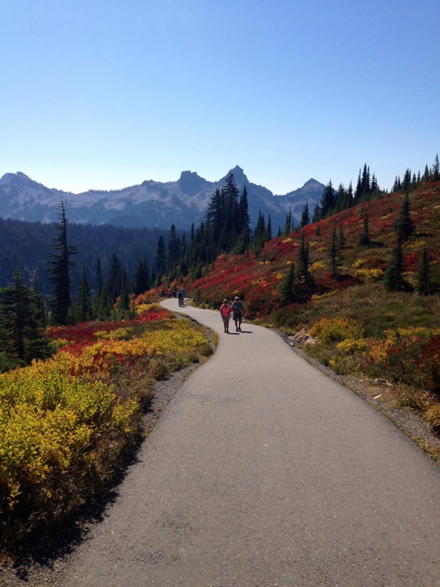 Fall at Paradise on Mount Rainier