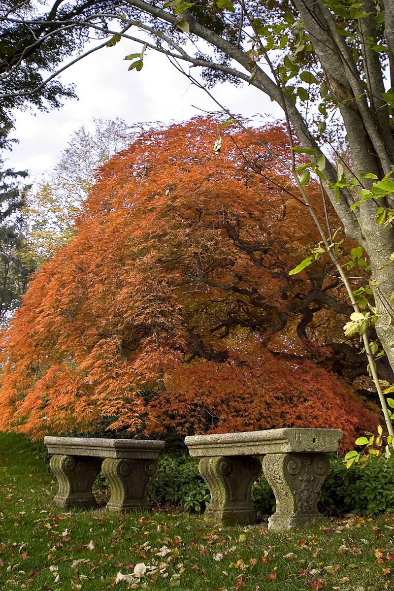 fall-foliage-benches_credit-chris-hunter