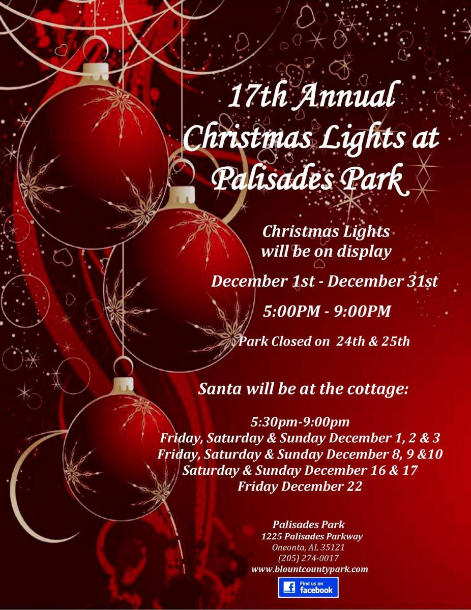 Christmas Lights at Palisades Park in Oneonta