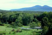 Mountain Top Arboretum