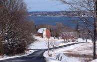 Cayuga County winter scene
