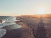Beach Strand