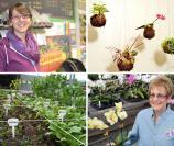 (Clockwise, from top left): Lauren Tamraz, Crossroads Hydroponics; Kokedama, japanese string gardens; Margaret Bridge, Black Meadow Flora; square foot gardening.