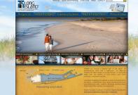 li-website.jpg