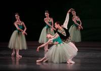 nyc-ballet-spac.JPG