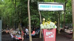 Forest Cinema Firefly Music Festival