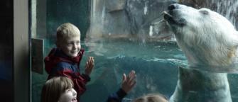 kids with polar bear at the Seneca Park Zoo in Rochester, NY