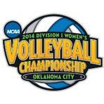 Volleyball microsite