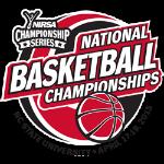 NIRSA Basketball Logo