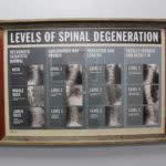 Valeo Chiropractic