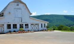 Mtn Cove Farm