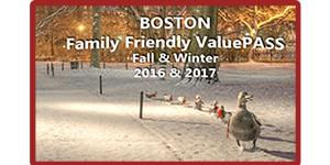 Family Friendly Winter Ducks