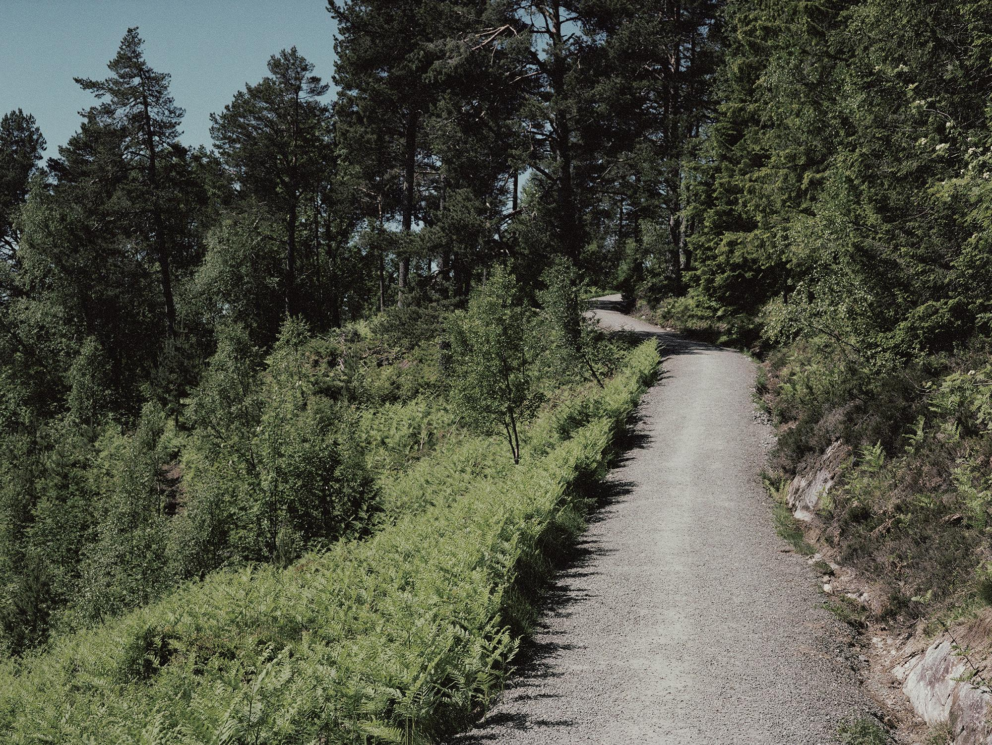 Gamle Vardeveien opp til Storlihytta i Molde 2