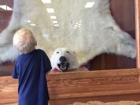 This huge bear is on display at the Churchill Airport