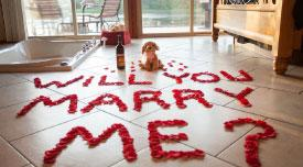 Proposal Package at Serenity Springs