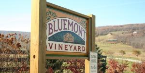 image-67964_348_JH Bluemont Vineyard sign horiz web.jpg-14.jpg