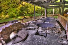 Sugarmill Botanical Garden