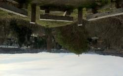 Tukwila Parks Tour: Duwamish Hill Preserve