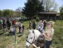 Enjoying a pony ride at the museum's Earth Day Celebration. (Credit: George Potanovic, Jr.)